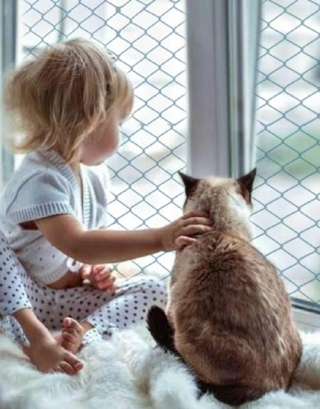 Telas de proteção apra crianças
